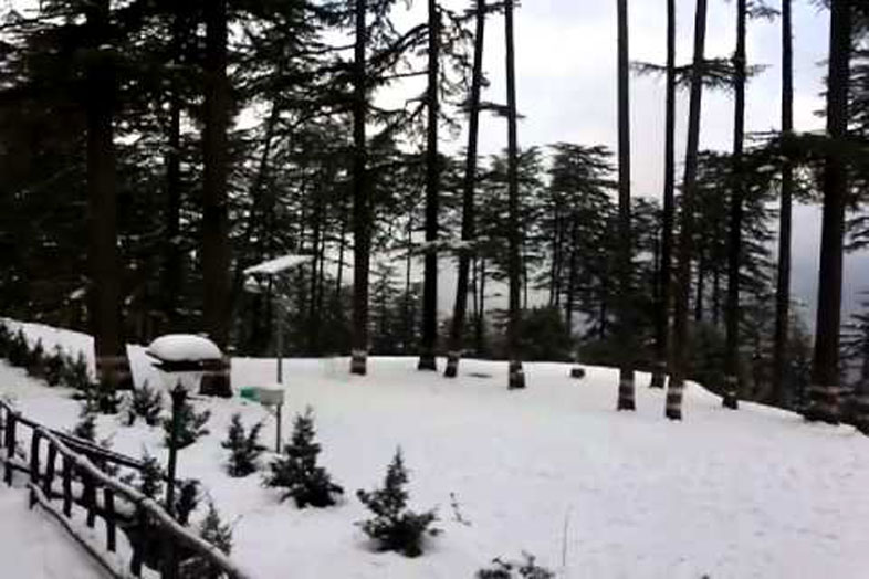 dhanaulti-holiday-packages-enchant-tours-03